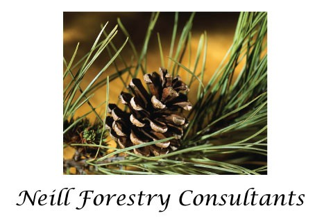 Neill Forestry Consultants